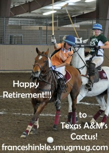 Happy Retirement Cactus!